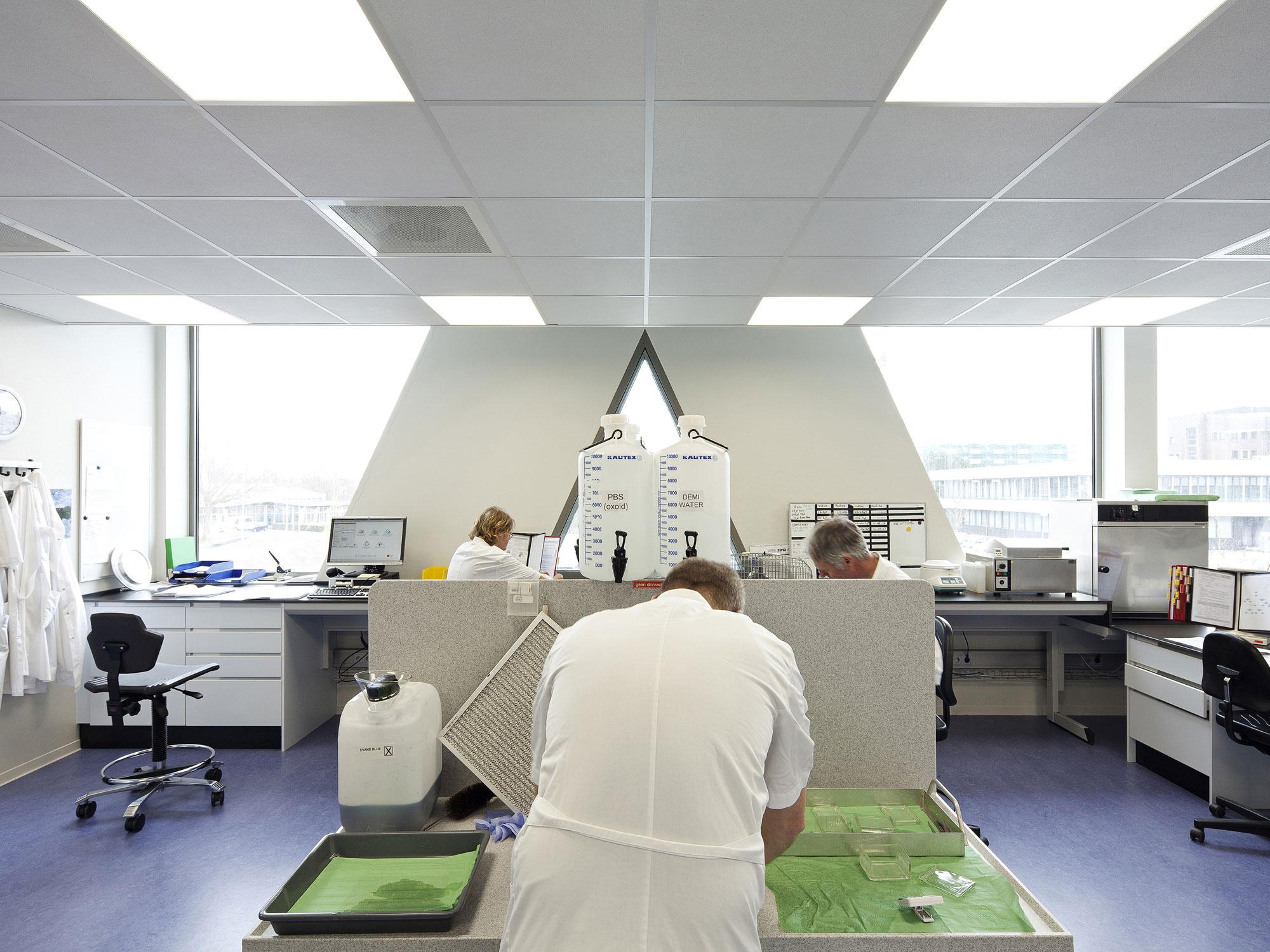 Laboratorium voor Infectieziekten 6